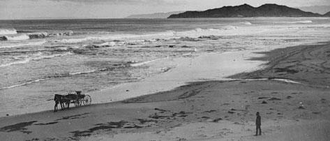 History1 >> Archive 7: A Place By The Sea. The history of Wainui Beach, Gisborne, New Zealand. The feature ...